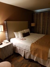 'Einzelbett' mit eigenem Flatscreen