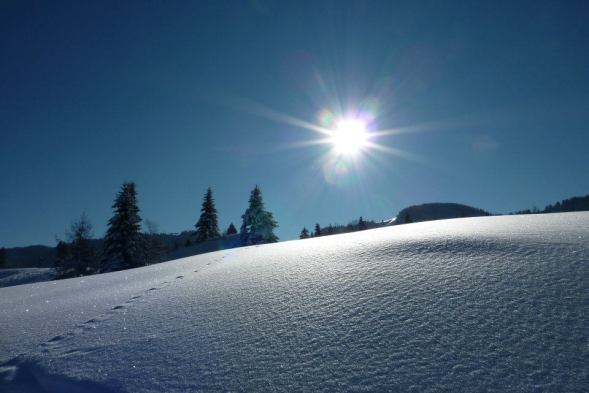 Tirol - schöner geht kaum