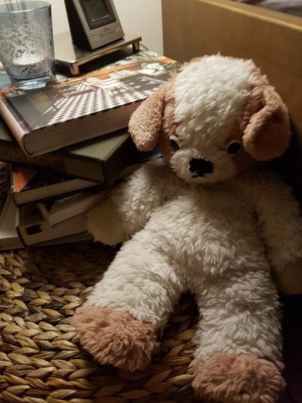 mein Teddy ist schon 45